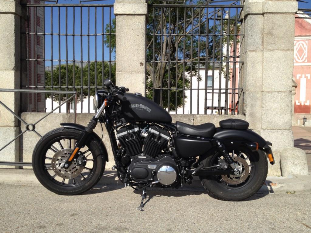 La Sportster XL 883 N Iron es una de las motos más asequibles del