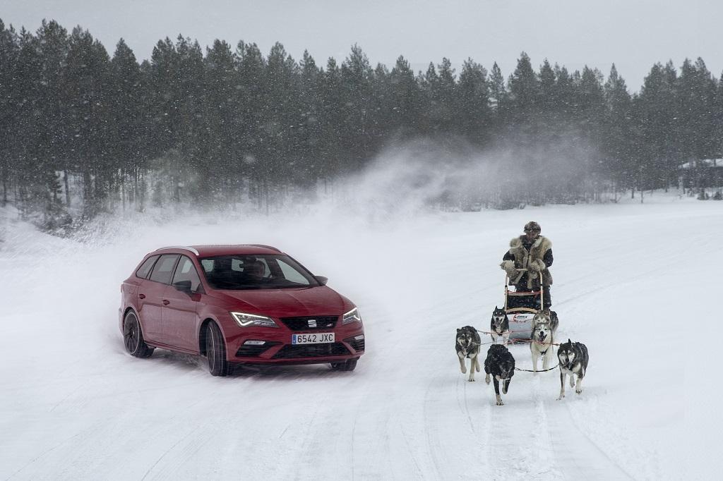 Seis huskies contra el nuevo SEAT León Cupra